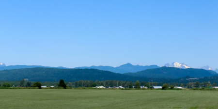 big green field with mountains in the distance